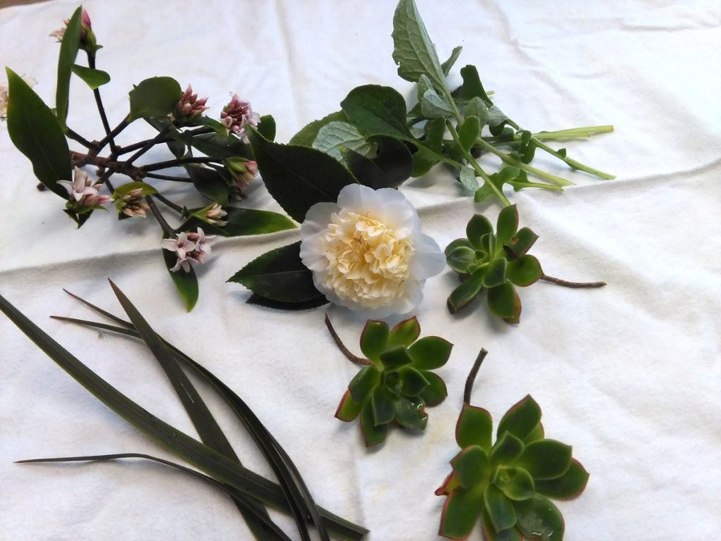 Floristry components