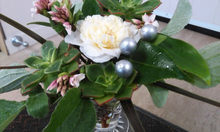 A Breath of Fresh, Crisp, Wintery Air – A Florists Poem